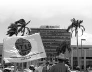 Nicaragua: Grupo Pellas contrató una manifestación de autoapoyo